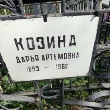Козина Дарья Артемовна